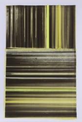 Mike Ottink, Yellow xy Score