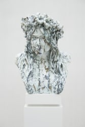 Anne Wenzel, Under Construction (Bust #2)