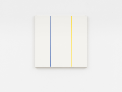 Steven Aalders, Stages (Blue and Yellow)