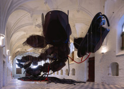 Karin van Dam, Floating Collapsible City System and Raising Coils