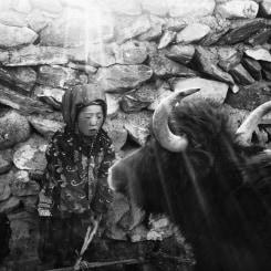 Ruben Terlou, Nomads of Aghanistan II