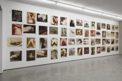 Paul Kooiker, Nude Animal Cigar, installation view, tegenboschvanvreden