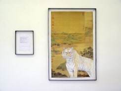 Voebe de Gruyter, De gedeelde tijger