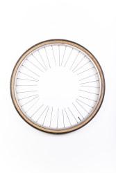 D.D. Trans, Het wiel