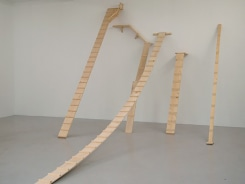 Saskia Janssen, Cat Ladders