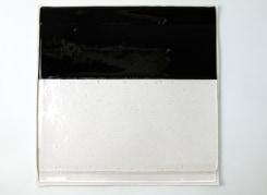 Jan ten Have, de versmelting van beeld en materiaal