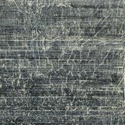 Stephan van den Burg, Untitled (sprout - tweeluik)