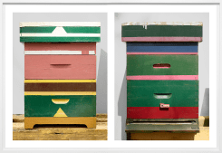 Scheltens & Abbenes, Beehives: Triangles - Stripes