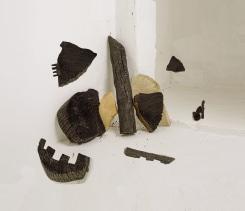 Nico Krijno, Sculpture Study with Burnt Wood