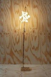 Bertjan Pot, Light 62