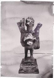 Wouter van de Koot, Trophy