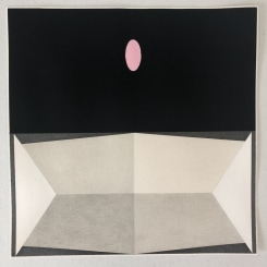 Pete Schulte, Untitled (Pink and Black for TA)