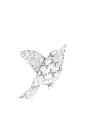 Mariëlle Videler, 365 Birds Series