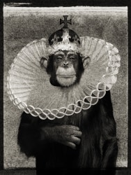 Albert Watson, 'King Casey,' New York City