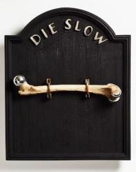 Midas Zwaan, Die Slow