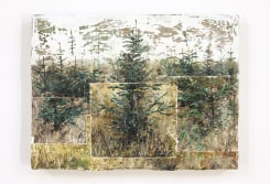 Jeppe Lauge, Three rows of trees