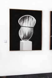 Jaya Pelupessy, Reflector Screen