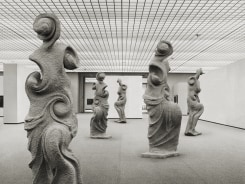 Koen Hauser, The Dance of Venus