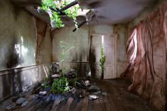 Choki Lindberg, Green Room