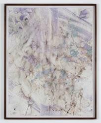 Anya Gallaccio, Untitled