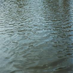 Jan Dibbets, Water 8