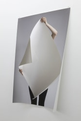 Kelly Schacht, Untitled