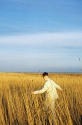 David van Dartel, Sil in het riet II/ Sil in the reeds II