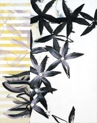 Janine van Oene, Button Book