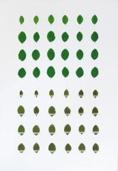 Anne Geene, Eeuwig Herbarium #22