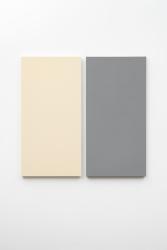 Alan Charlton, Painted / Unpainted