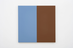 Steven Aalders, Two Halves (Blue Grey, Brown)