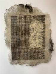 Diana Scherer, Hyper Rhizome #7