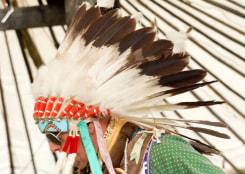 Patricia Werneck Ribas, Tribal Affairs