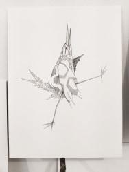 Mariëlle Videler, 365 Birds