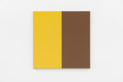 Steven Aalders, Two Halves (Yellow, Brown)