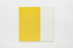 Steven Aalders, Phi (Yellow)