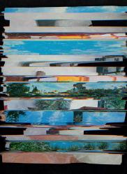 Nico Krijno, Lockdown Collage #9
