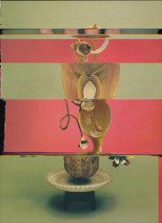 Nico Krijno, Lockdown Collage #24