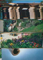 Nico Krijno, Lockdown Collage #38