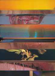 Nico Krijno, Lockdown Collage #64