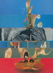 Nico Krijno, Lockdown Collage #70