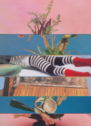 Nico Krijno, Lockdown Collage #71