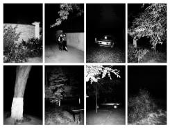 Tudor Bratu, Night Study