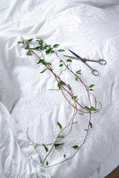 Satijn Panyigay, 'Ágak' (Branches) - special edition