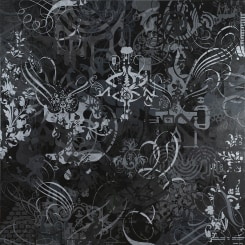 Ryan McGinness, The Have Nots