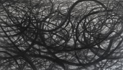 David DiMichele, Tire Track Abstraction