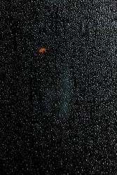 Sarah van Sonsbeeck, Accidental Universe, Study