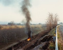 Guido Guidi, 238 E45 S. Vittore 1988