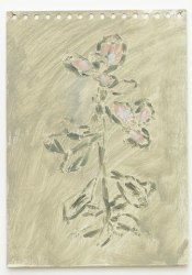Marc Vanderleenen, Untitled (flower)