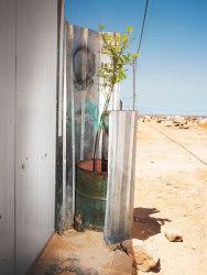 Henk Wildschut, Lime Tree, Zaatari, Jordan